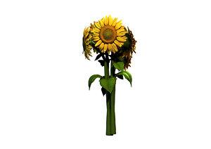 3d model sunflower flower