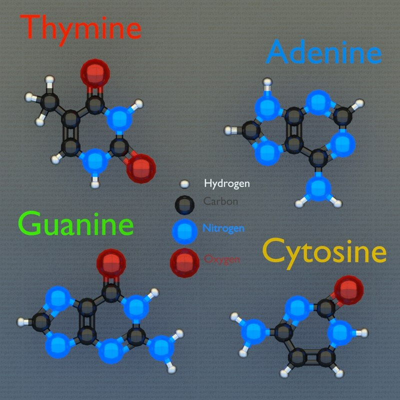 dna molecules 3d blend