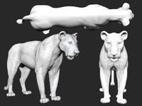 lion 3ds