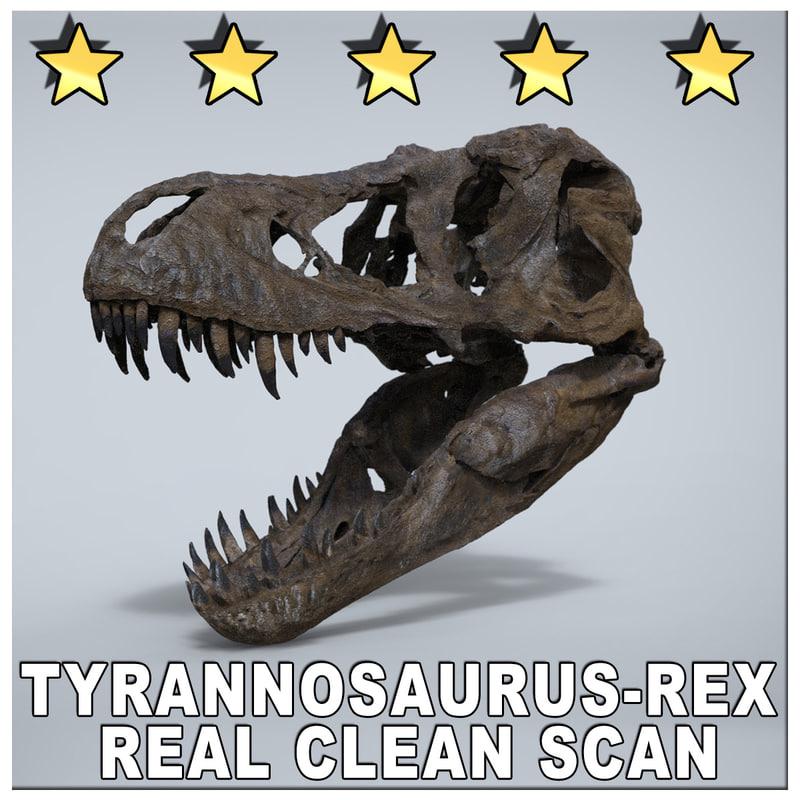 3d model museum scan