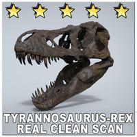 TYRANNOSAURUS REX SCAN