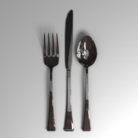 3d silverware everyday