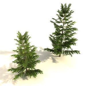 max set pine trees polygonal