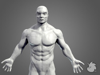 sculpt muscular male base mesh 3d obj
