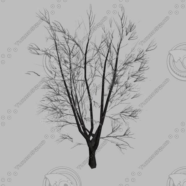 3ds max autumn tree