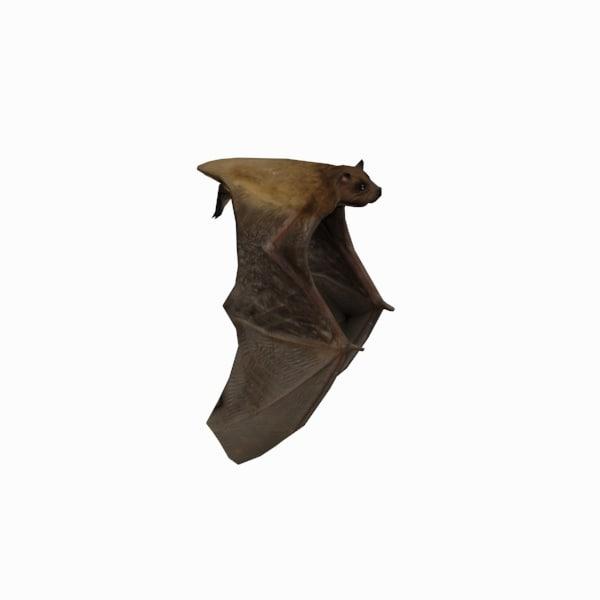 flying bat 3d max