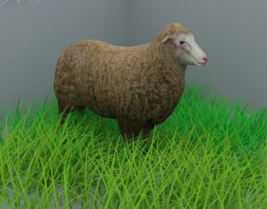 3ds max sheep