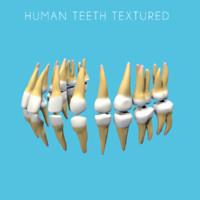 human teeth texture