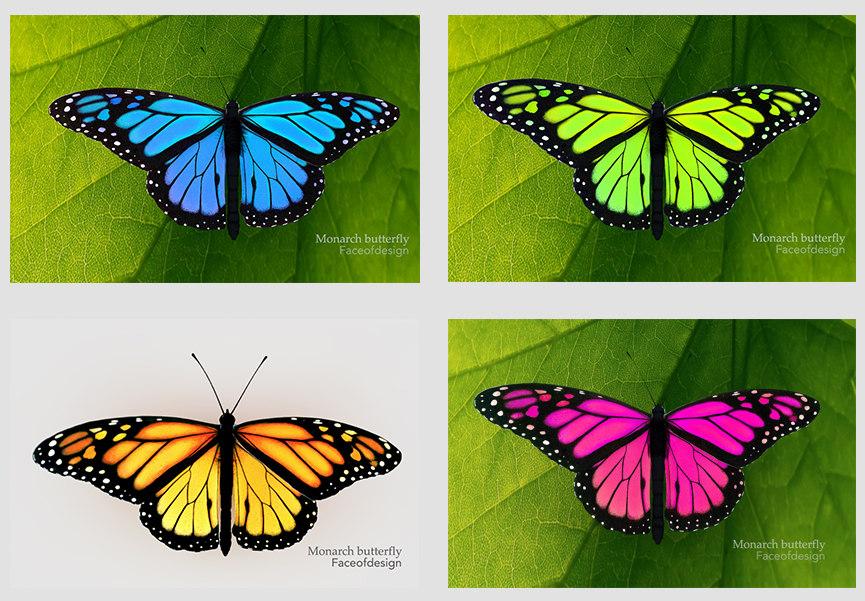 3d c4d monarch real