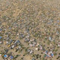 lwo favela slum trees