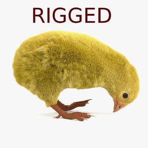 3d chicken rigged