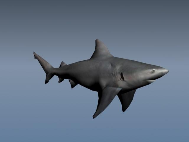 3d shark