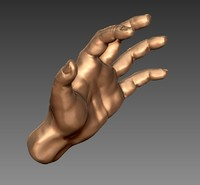 3d high-poly hand model