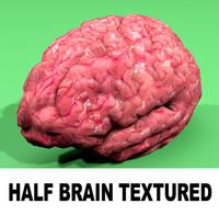 Half Brain Textured 2