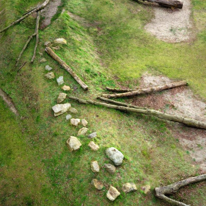 playfull trees 3d model