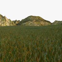 grassland grass 3d model