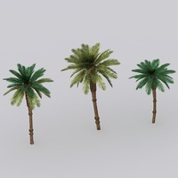 Low-poly palm tree