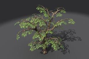 tree branches obj