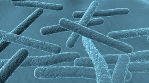 carbon bacteria 3d obj