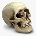 Halloween decoration 3D models