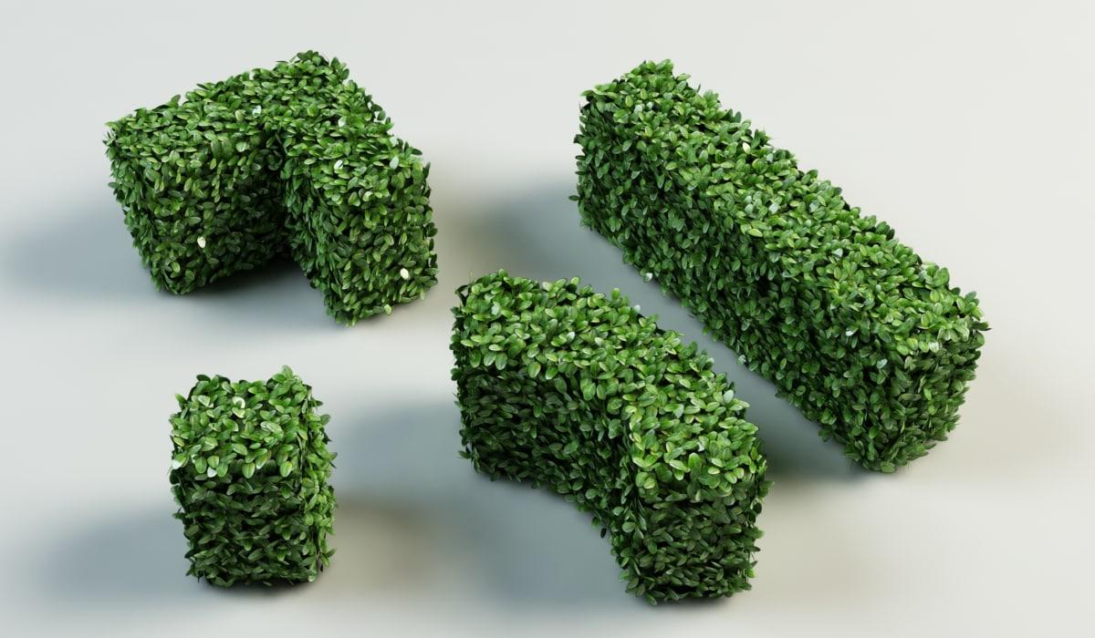 3d model hedge bushes