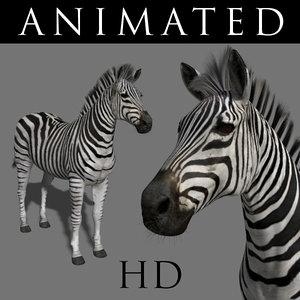 3d realistic zebra model