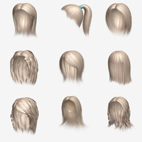 Polygon Hair Collection 2