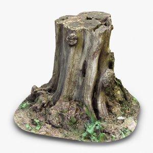 tree stump 1 3d model
