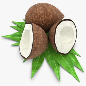 coconut coco nut 3d 3ds