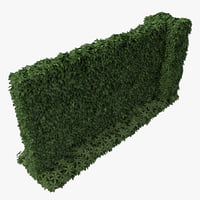 green ivy wall 3d c4d