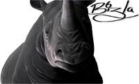 rhino animations 3d model