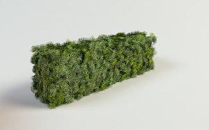 topiary thuja bush hedges 3d max