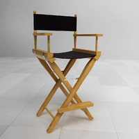 max director chair