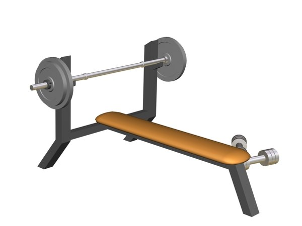 olympic weight bench max