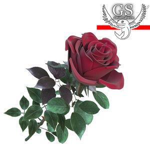maya realistic rose flower
