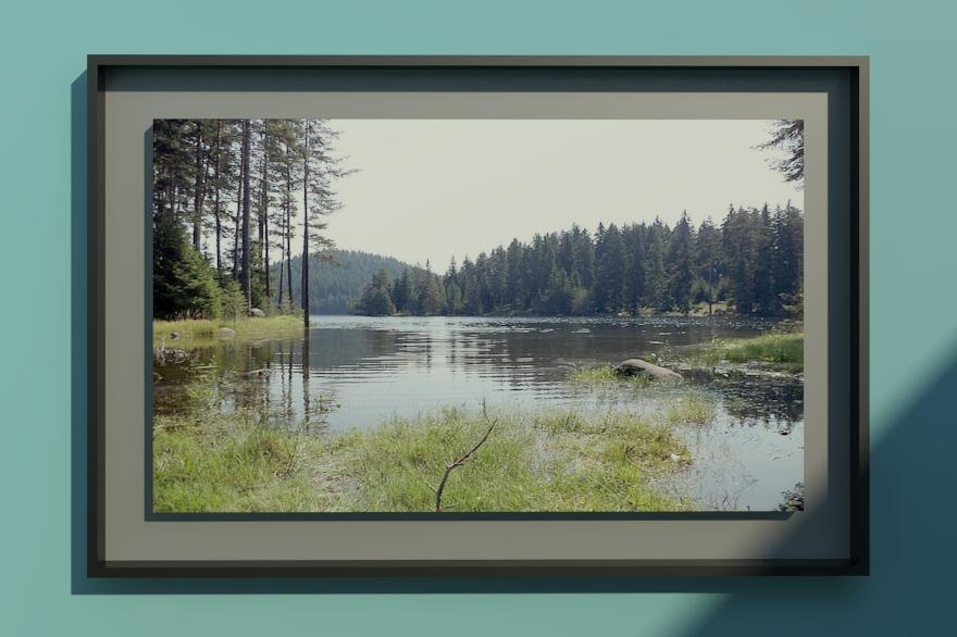 modern frame pictires 3d rvt
