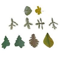 leaves_02