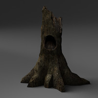 Hollow Fallen Tree Stump