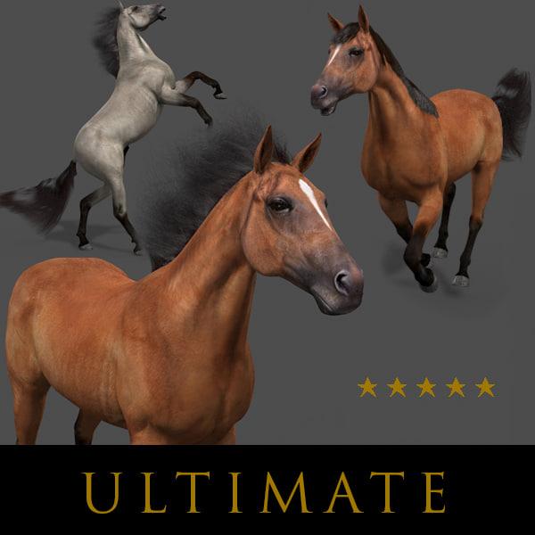 maya horse animations tail