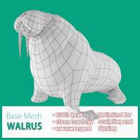 base mesh walrus 3d model