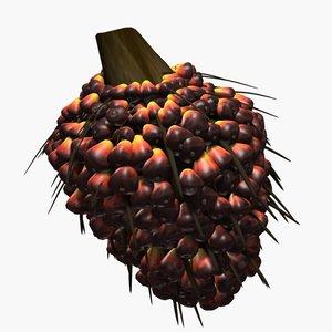 3d oil palm fruit