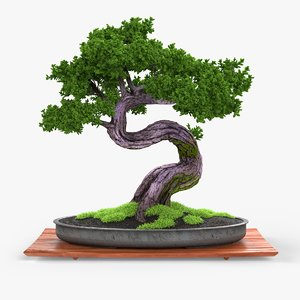 bonsai realistic 3d fbx