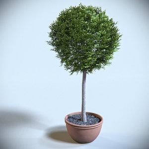 3d decoration shrub