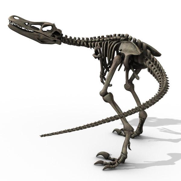 velociraptor skeleton animator 3d ma