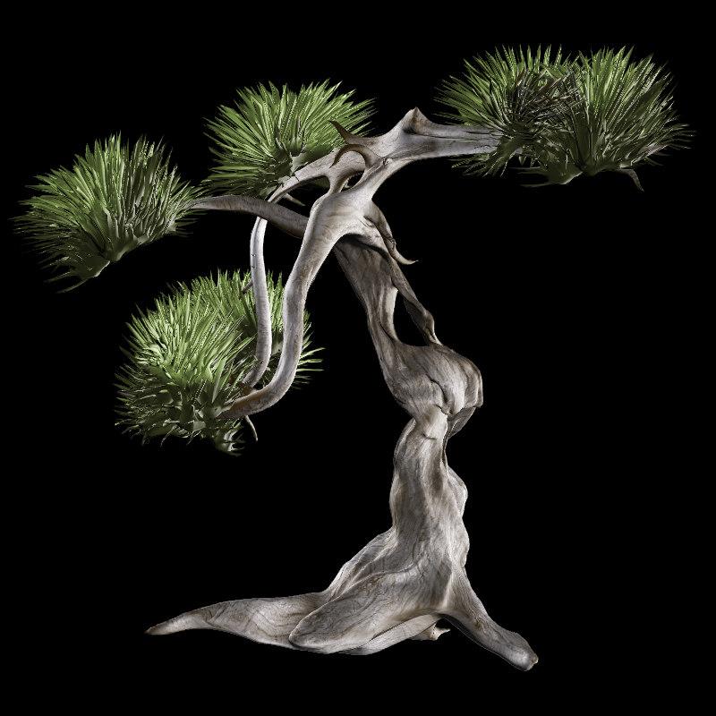 twisted tree 3d obj