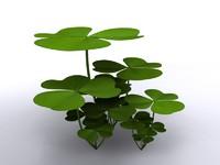 clover shamrock 3d model