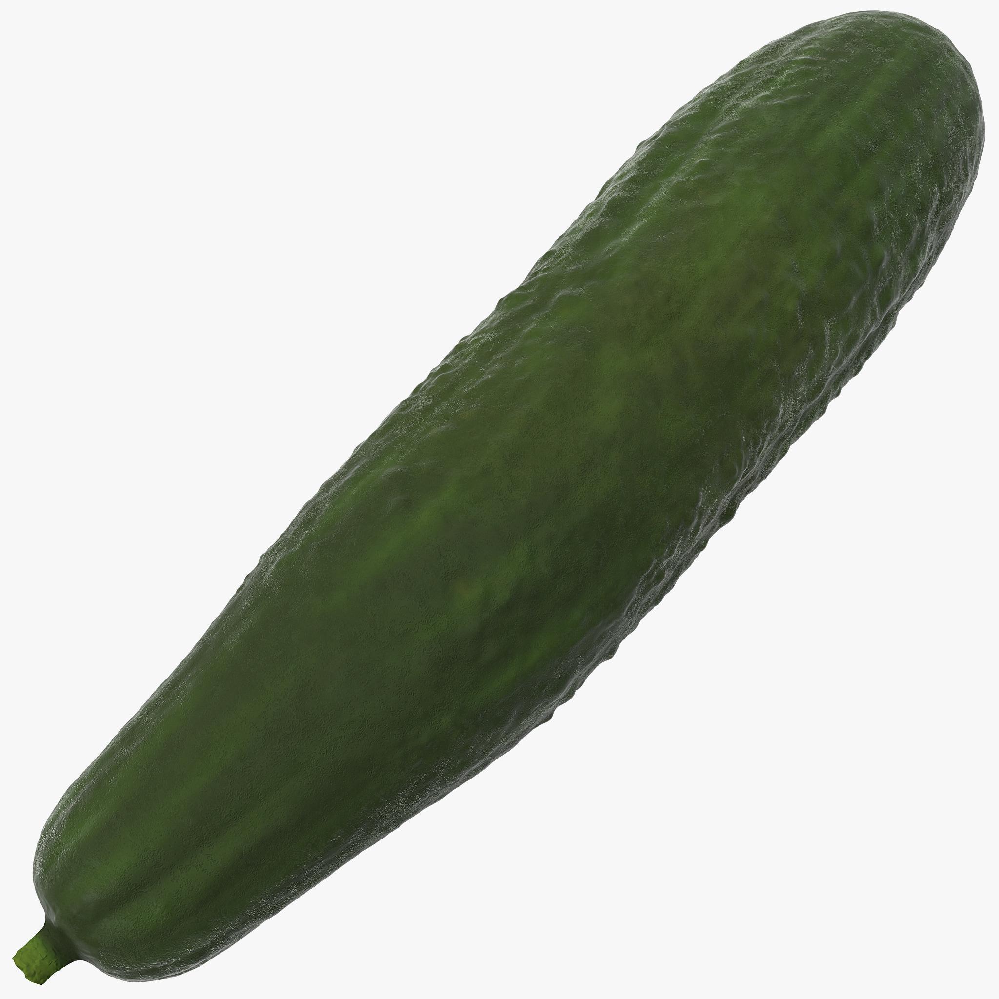 cucumber 2 3d model