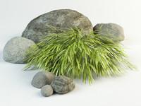 hakone grass hakonechloa macra