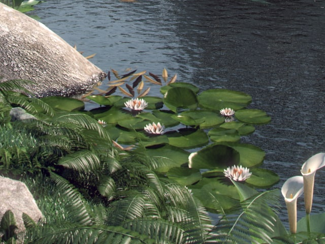 3d model water lily
