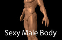 Sexy Male Body - Male Human Anatomy